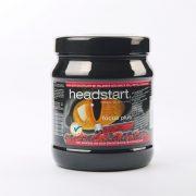 Headstart focus plus Instant Pulver Waldbeere 500g